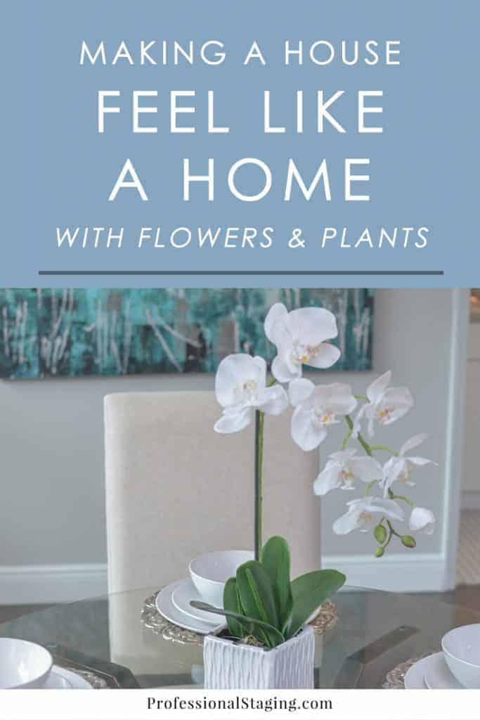 Flowers and plants are great ways to bring a warm, inviting touch to your home. Here are some decorating tips you can start implementing today, even on a budget!