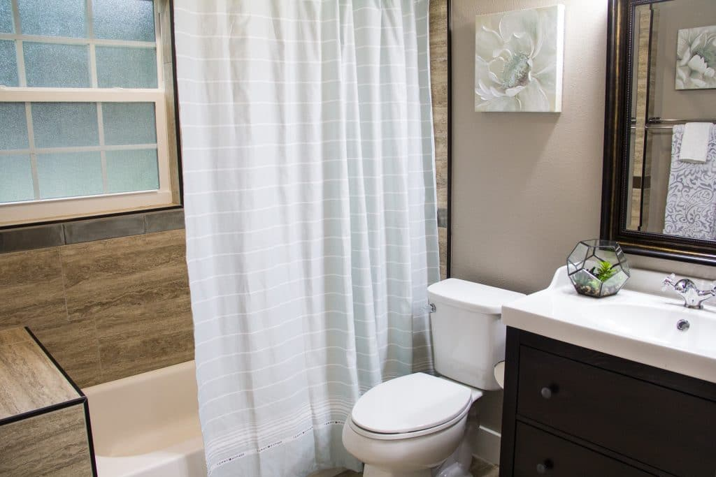 Guest bathroom of the King Zombie from Zombie House Flipping S2 E3