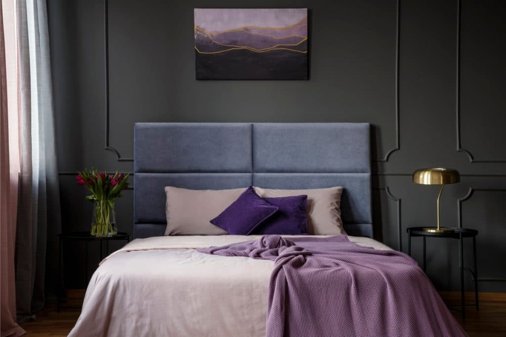 Contemporary bedroom with dark gray walls and purple bedding